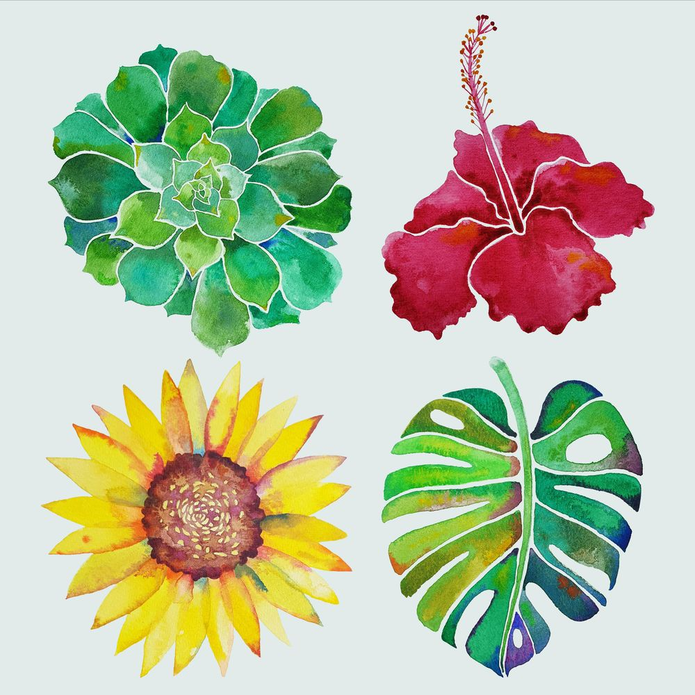 Watercolour Botanicals Practice - image 5 - student project