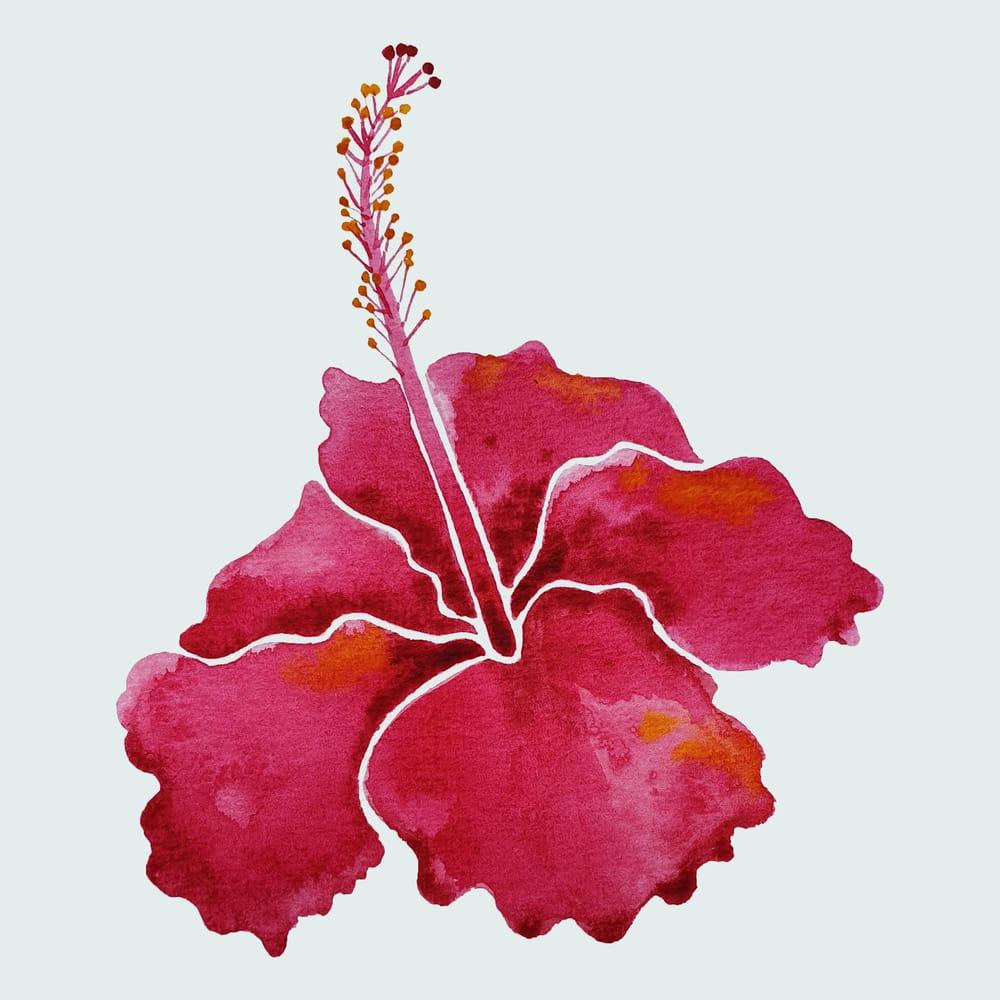 Watercolour Botanicals Practice - image 1 - student project