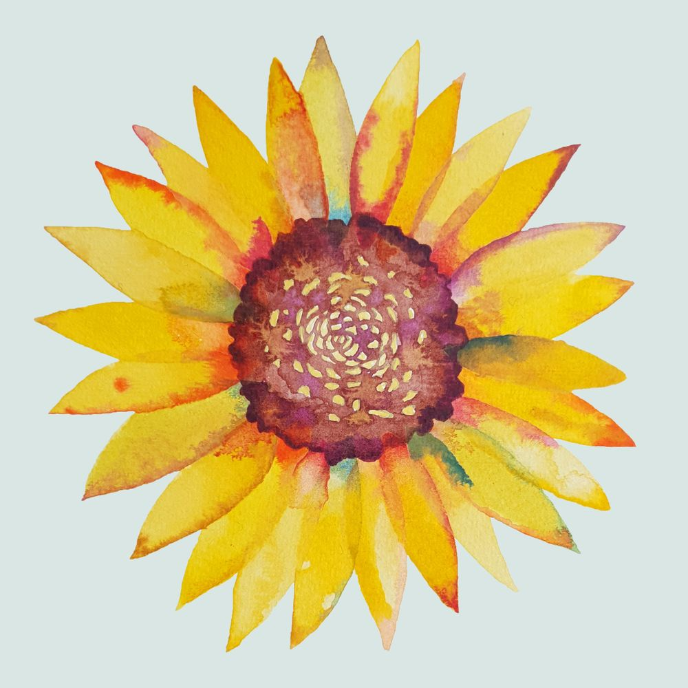 Watercolour Botanicals Practice - image 3 - student project