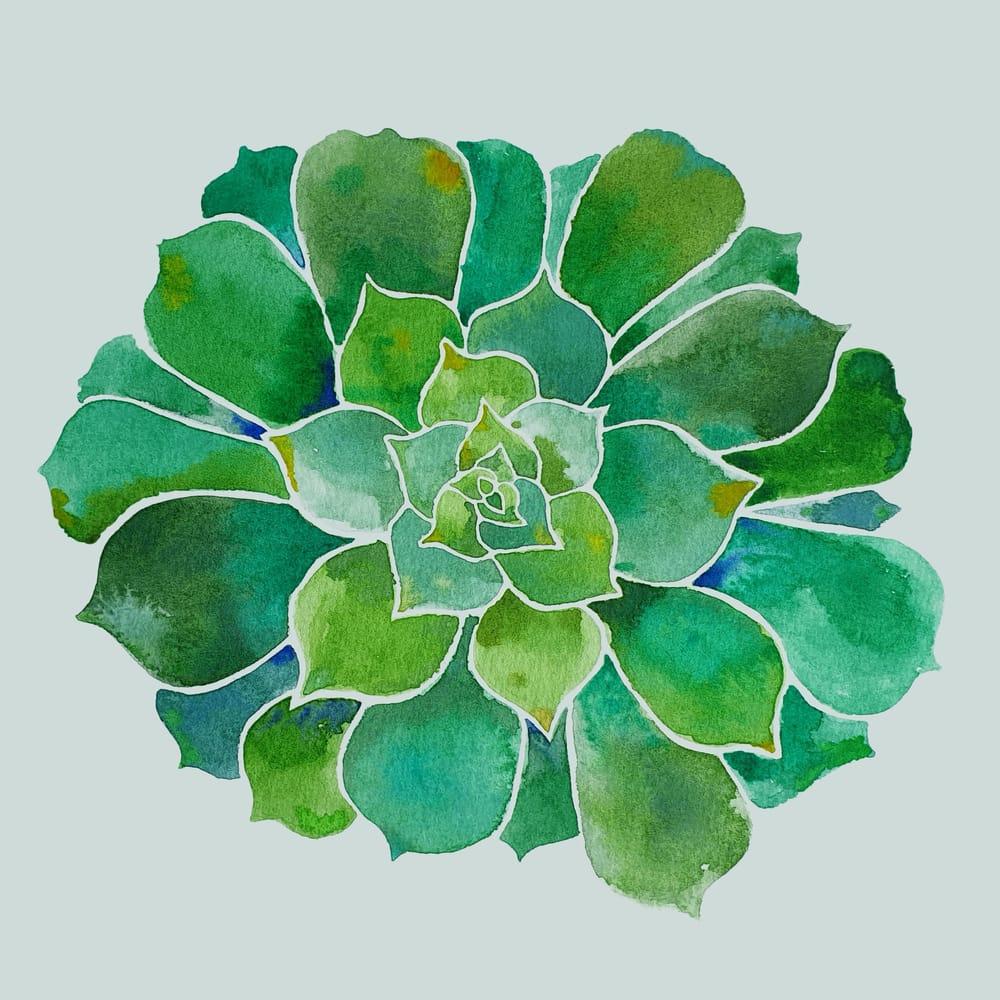 Watercolour Botanicals Practice - image 4 - student project
