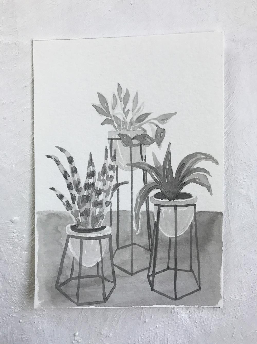 Birmingham Plant Stores - image 3 - student project