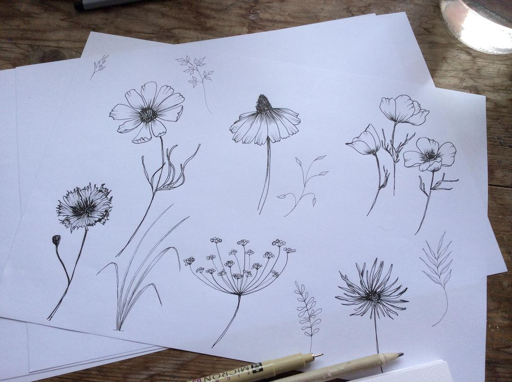 Ink wild flowers - image 1 - student project