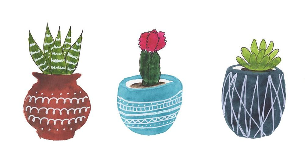 Succulent Pots - image 1 - student project