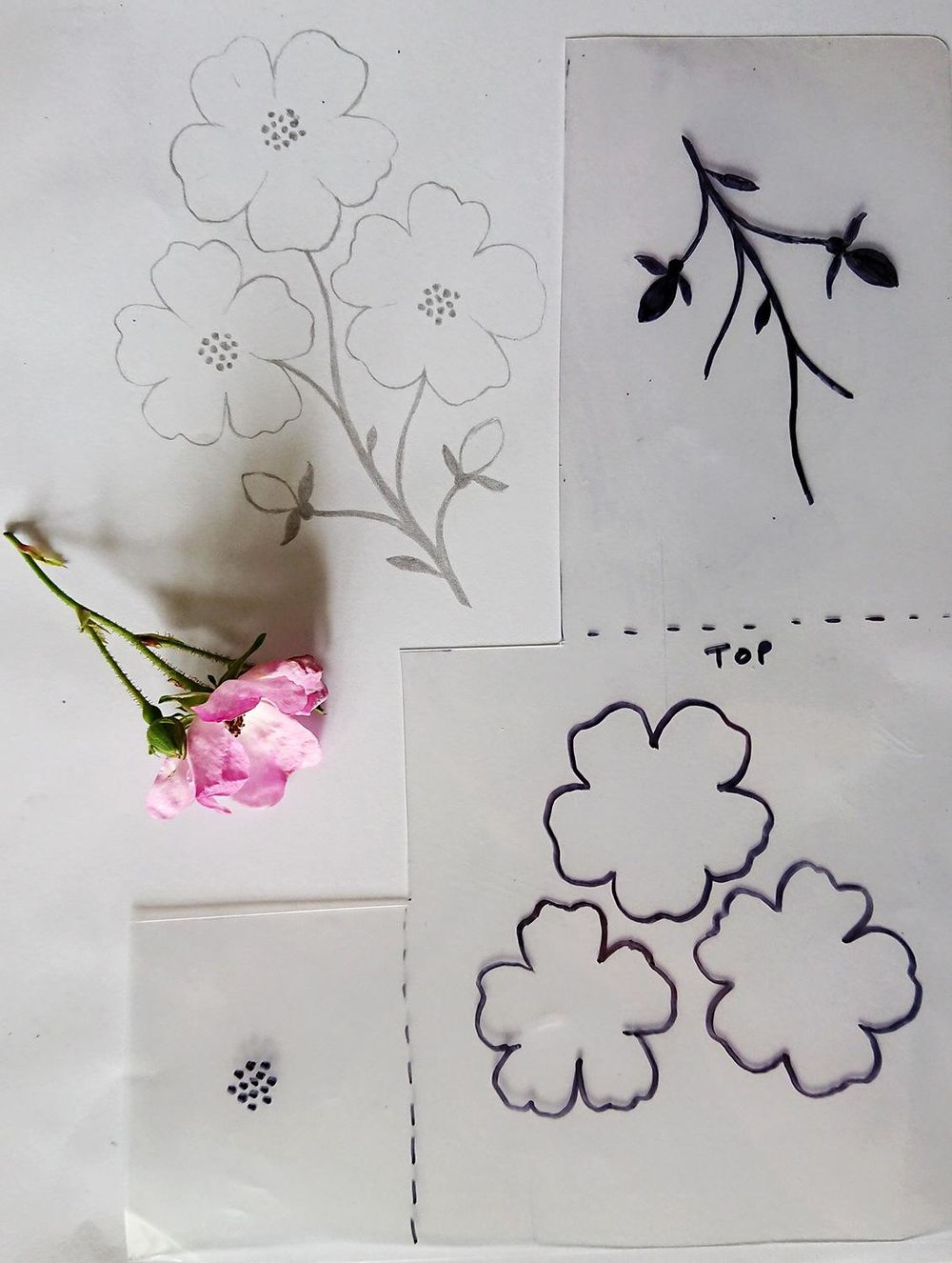 Garden Flowers - image 3 - student project
