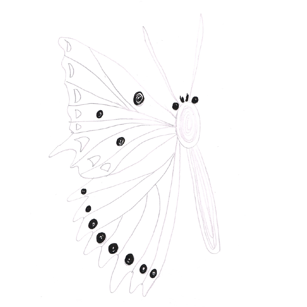 Butterflies (example project) - image 3 - student project