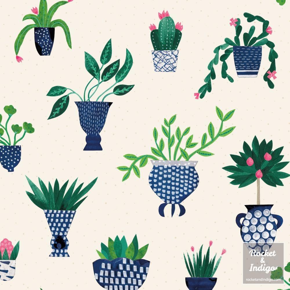 Houseplants - image 2 - student project