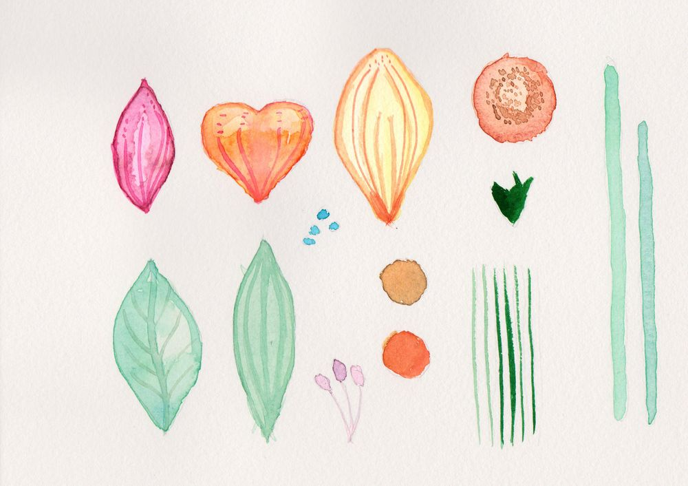Botanical Scenes in Photoshop exercises - image 1 - student project