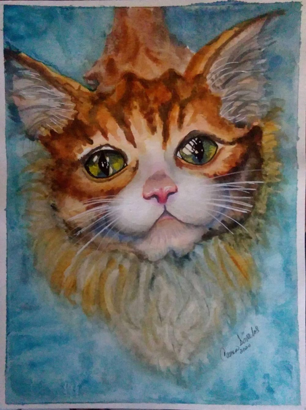 Cat. Carmen Davalos - image 1 - student project