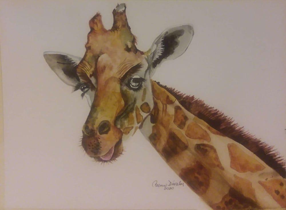 Giraffe. Carmen Davalos - image 1 - student project