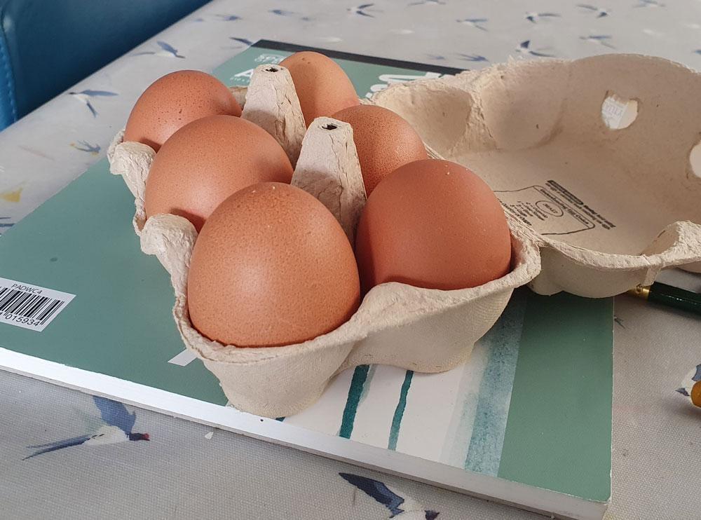 Half a dozen eggs - image 2 - student project