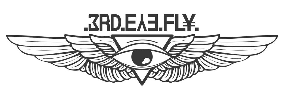 3RD EYE FLY - image 1 - student project