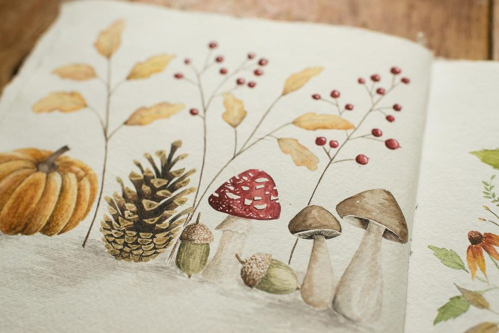 Adorable Fall Elements in Watercolor - image 2 - student project