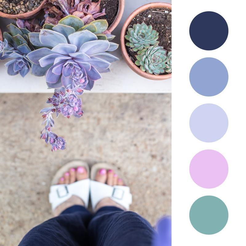Colour Palette fun - image 3 - student project