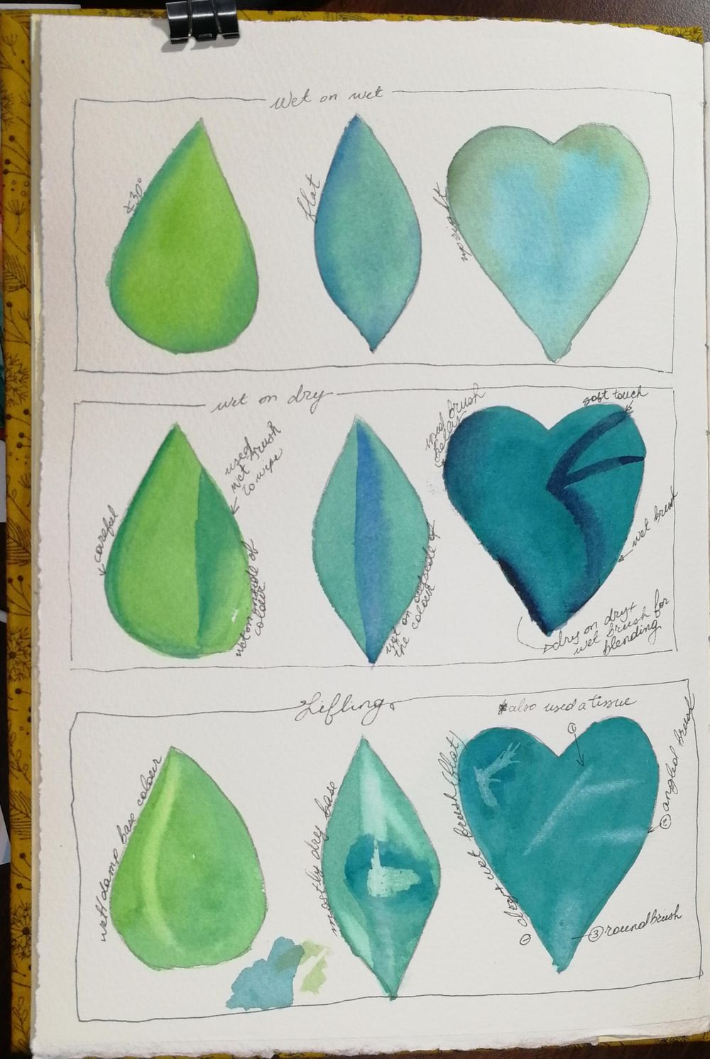 Are montsera leaves the new orchids? - image 1 - student project