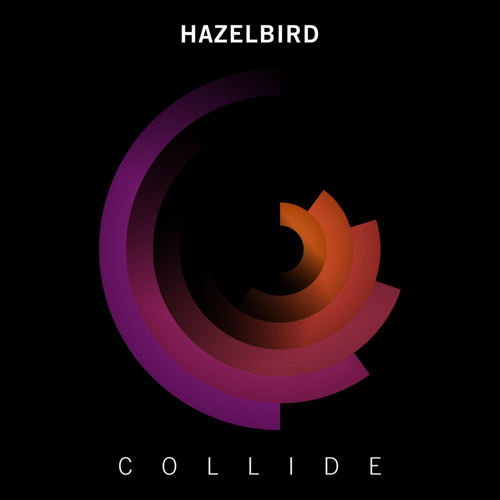 Hazelbird - Collide - image 1 - student project