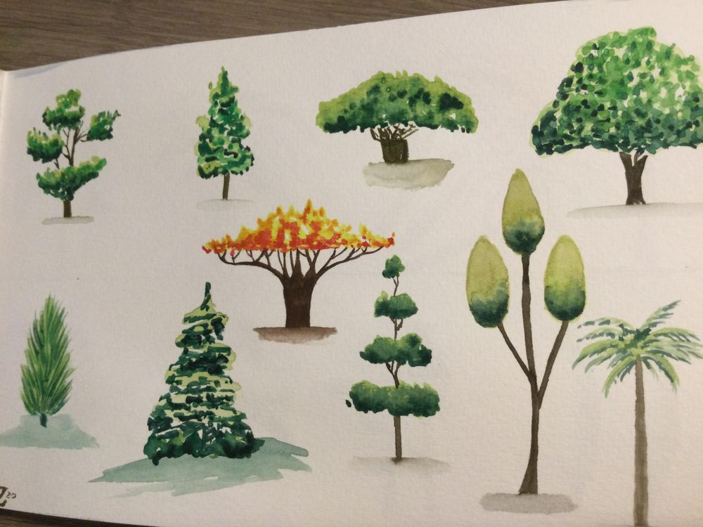 Trees - image 3 - student project