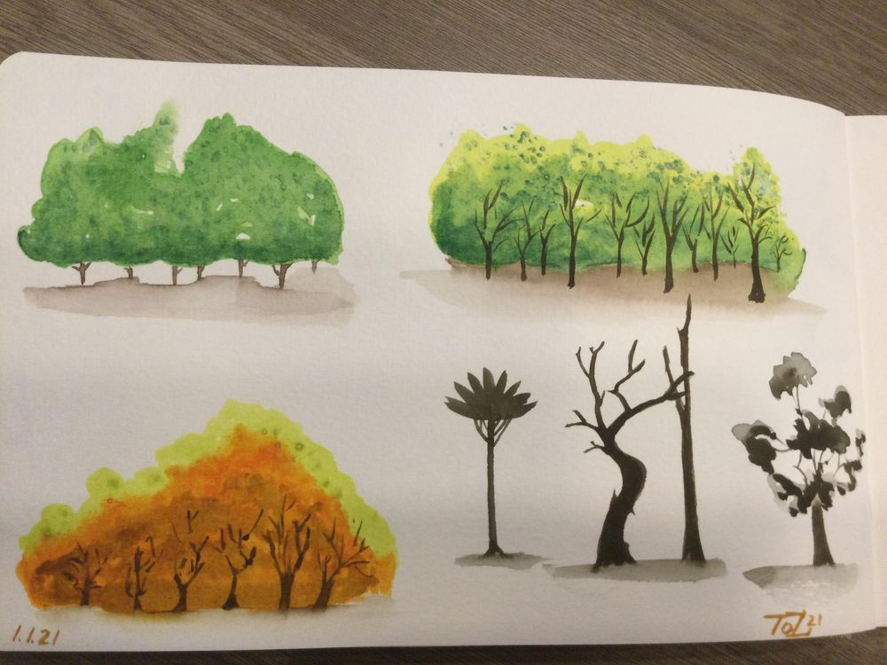 Trees - image 4 - student project