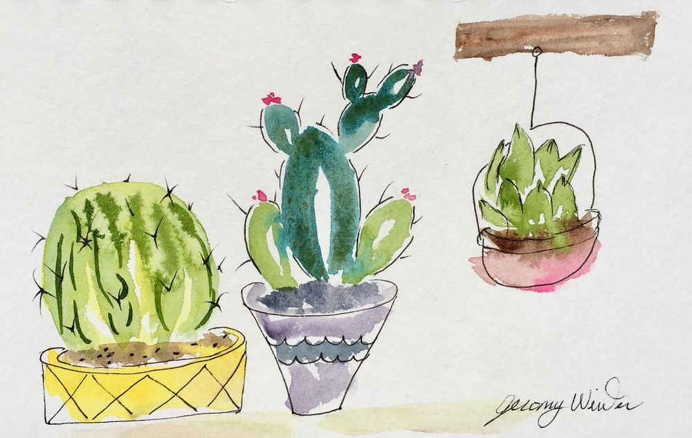 Prickly Cactus - image 5 - student project
