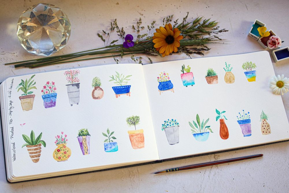 Planted pots - image 1 - student project