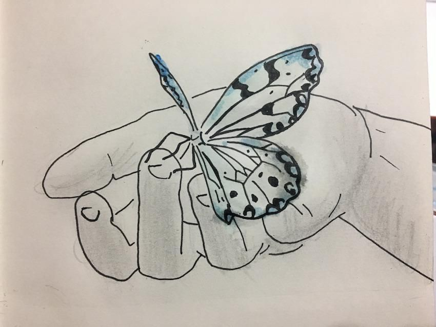 Beginner Practice - image 5 - student project