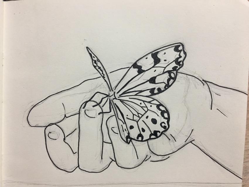 Beginner Practice - image 4 - student project