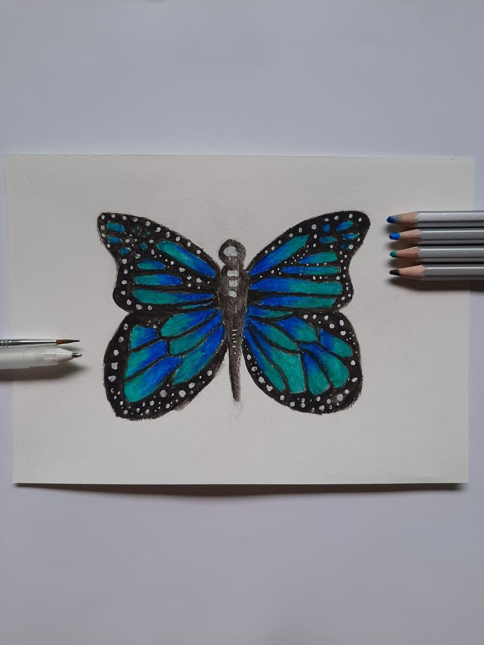Butterfly - image 3 - student project