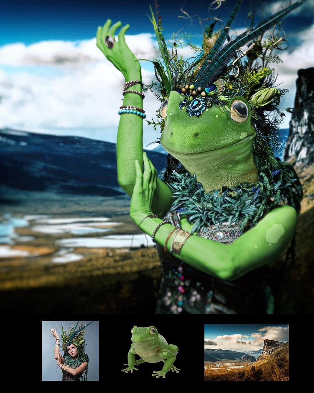 Frog Woman - image 1 - student project
