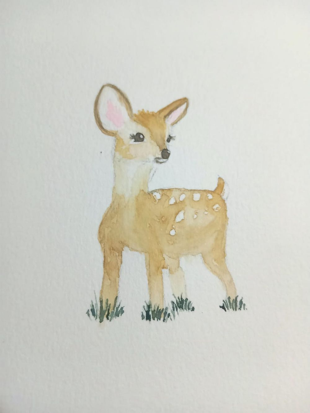 baby animals - image 2 - student project