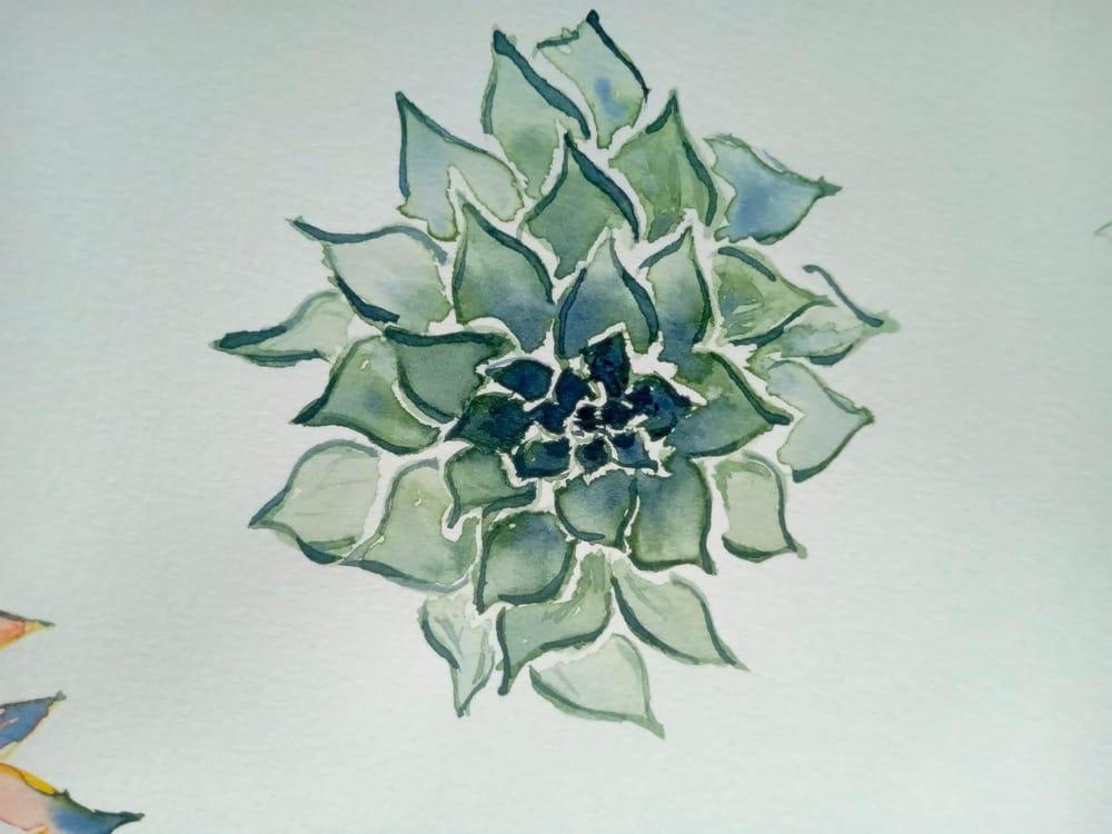 succulents - image 2 - student project