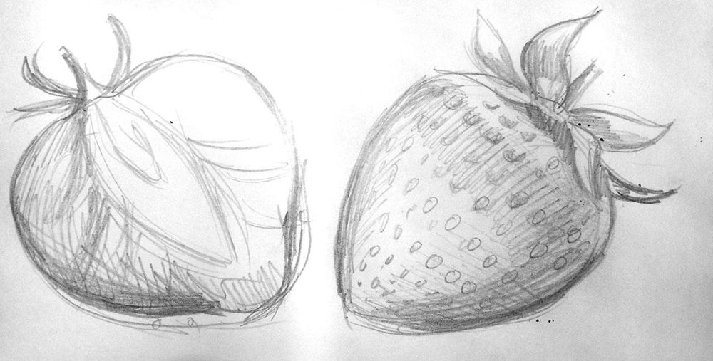 Orchid and strawberry - image 1 - student project