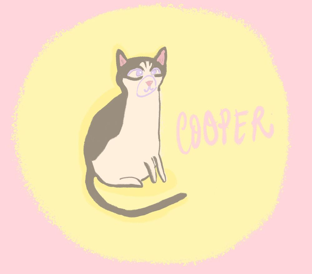 Mr. Cooper - image 3 - student project