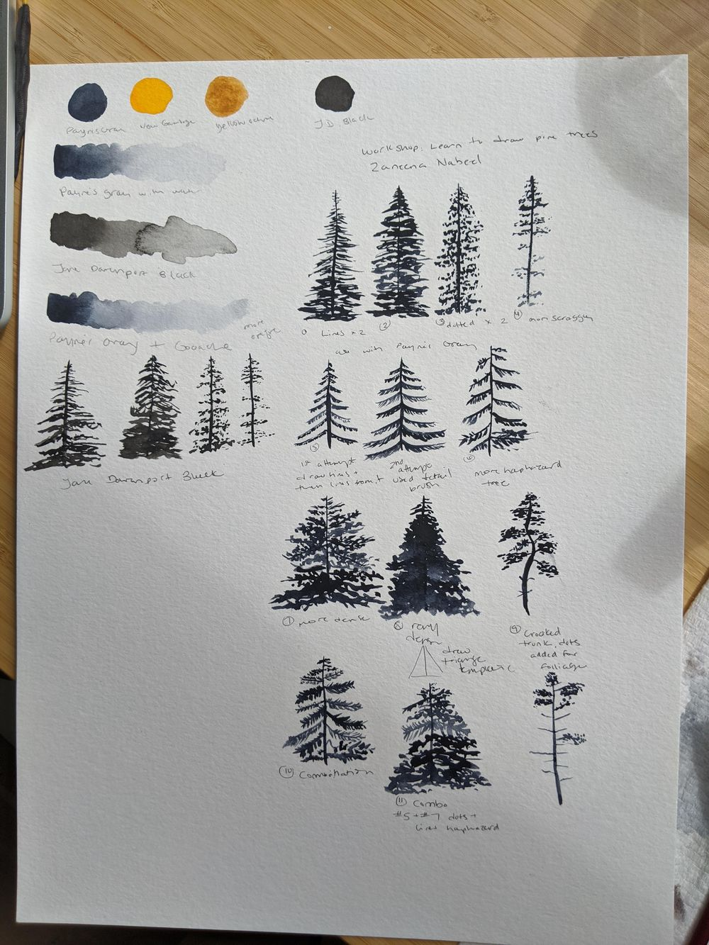 Pine Tree Projects - image 4 - student project