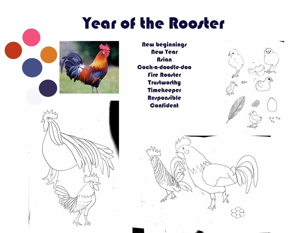 Year of the Rooster - image 2 - student project