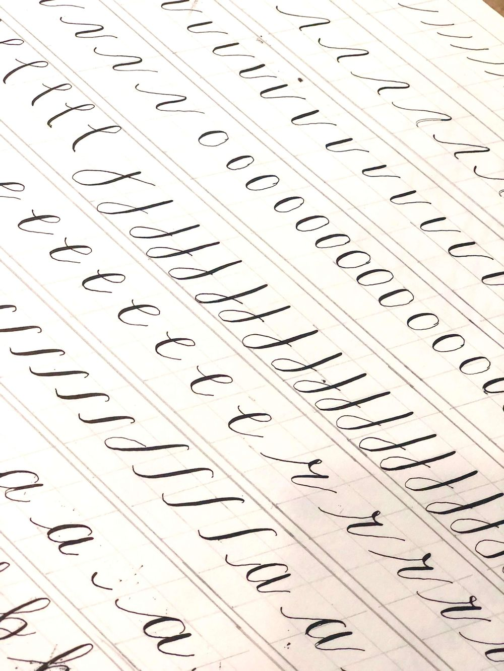 Modern Calligraphy: Pointed Pen Basics - image 4 - student project