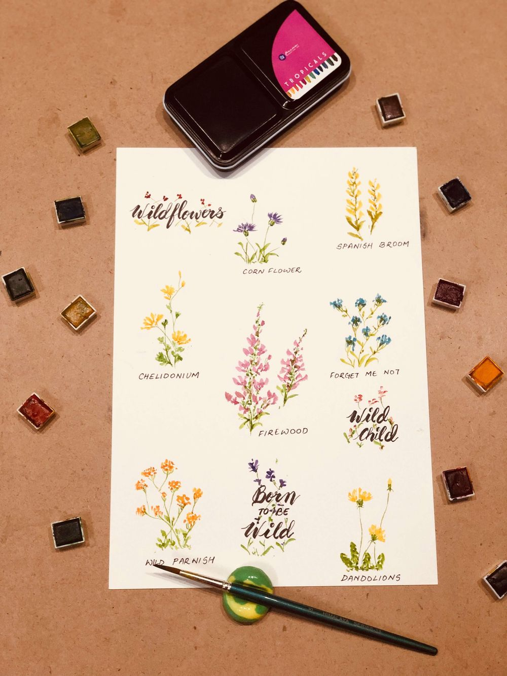 Born to be Wild - Wildflowers in Watercolours - image 1 - student project