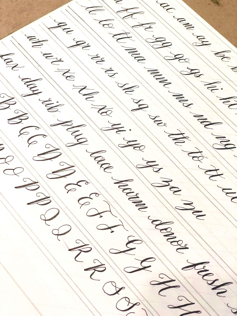 Modern Calligraphy: Pointed Pen Basics - image 2 - student project