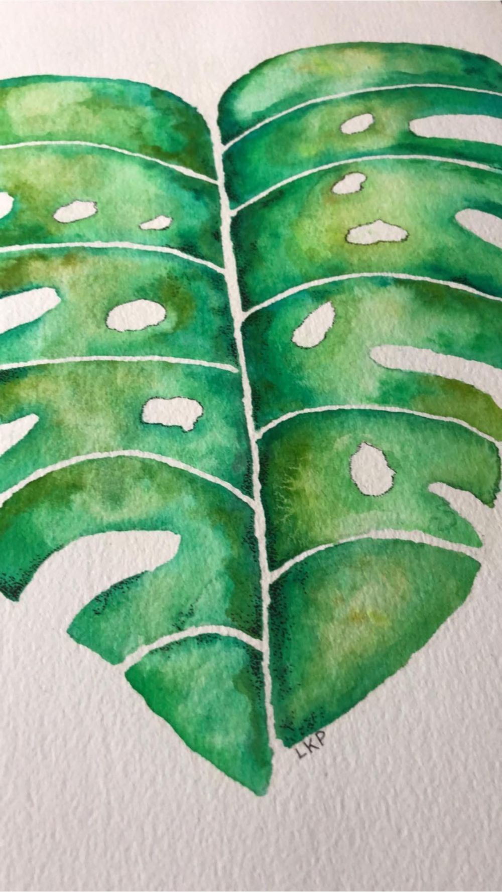 Watercolor Monstera Leaf - image 1 - student project