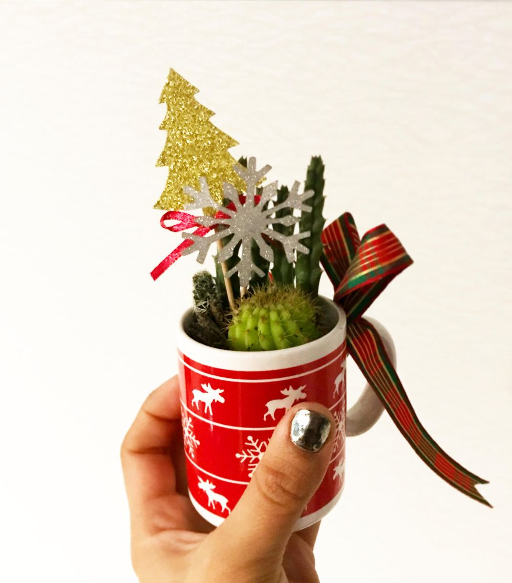 Succulents in a cup - image 1 - student project