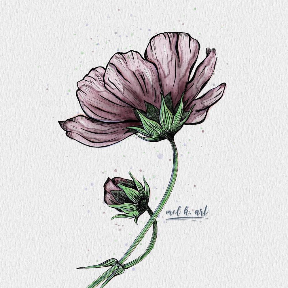 Purple poppy flower - image 1 - student project