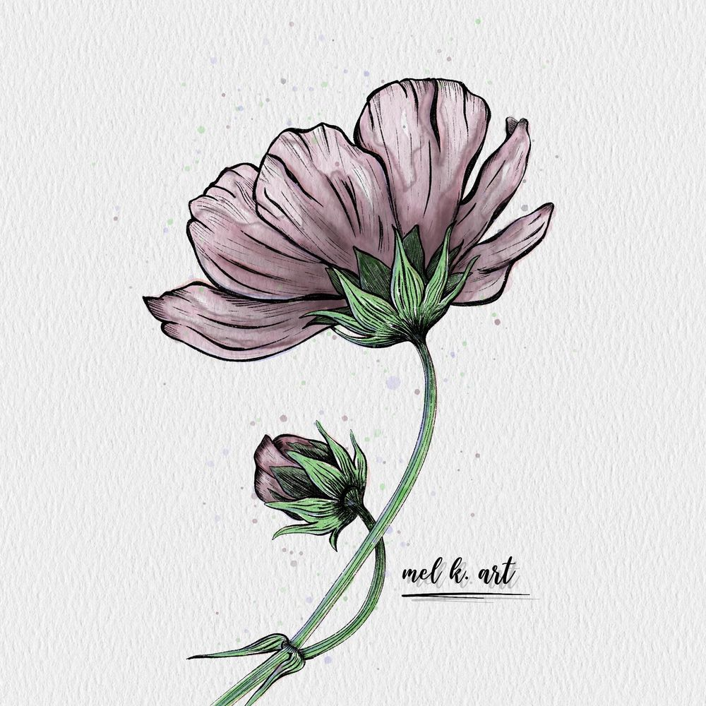 Purple poppy flower - image 2 - student project
