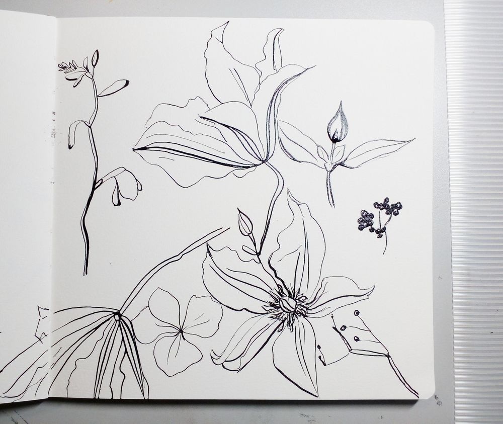 Attempting 'Abstract' Florals - image 1 - student project