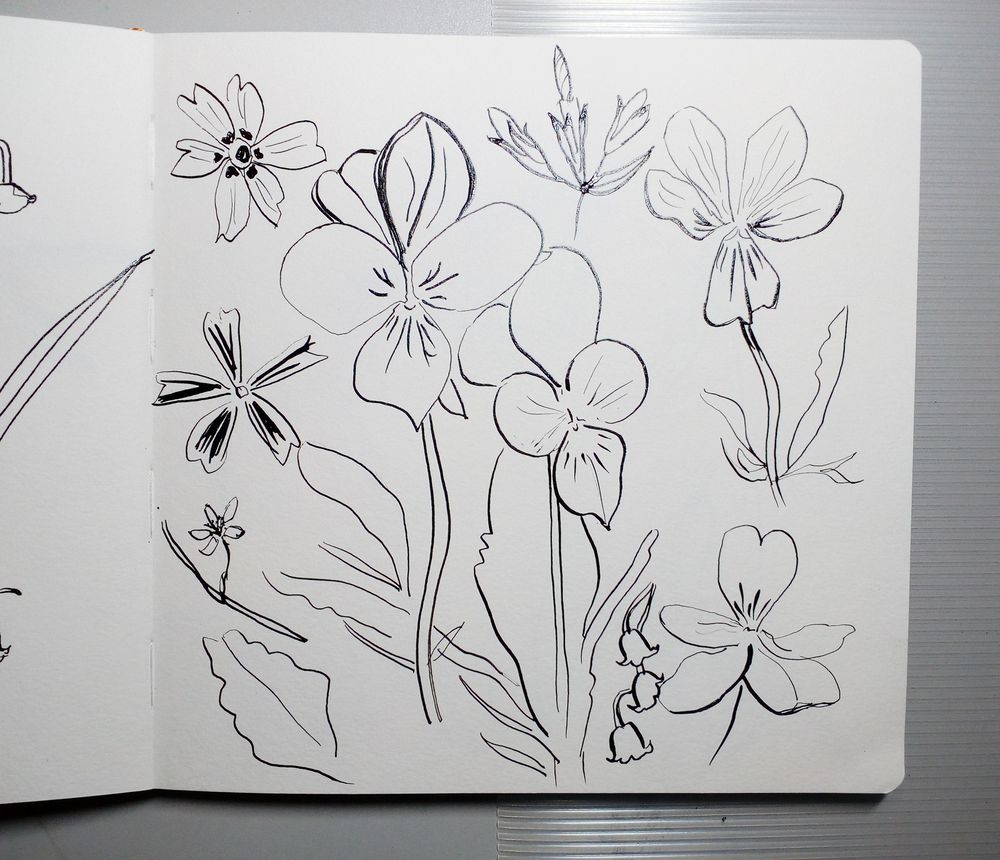 Attempting 'Abstract' Florals - image 2 - student project