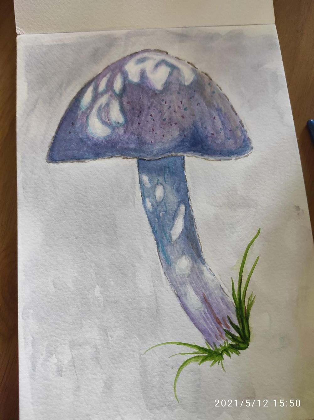Watercolour Attempt - image 1 - student project