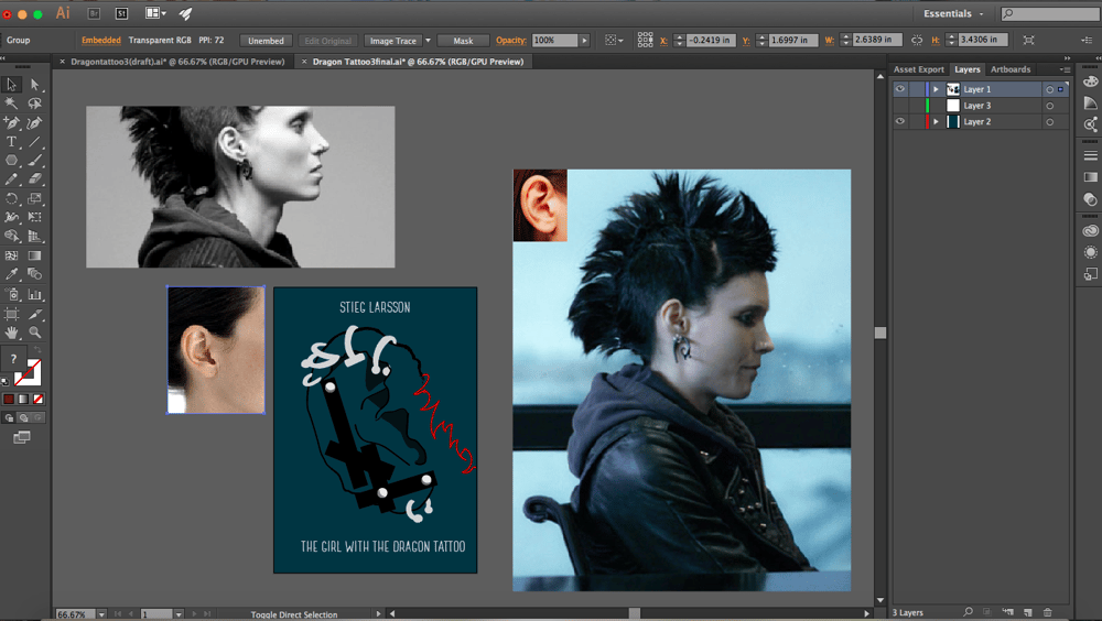 The Girl With The Dragon Tattoo - Stieg Larsson - image 13 - student project