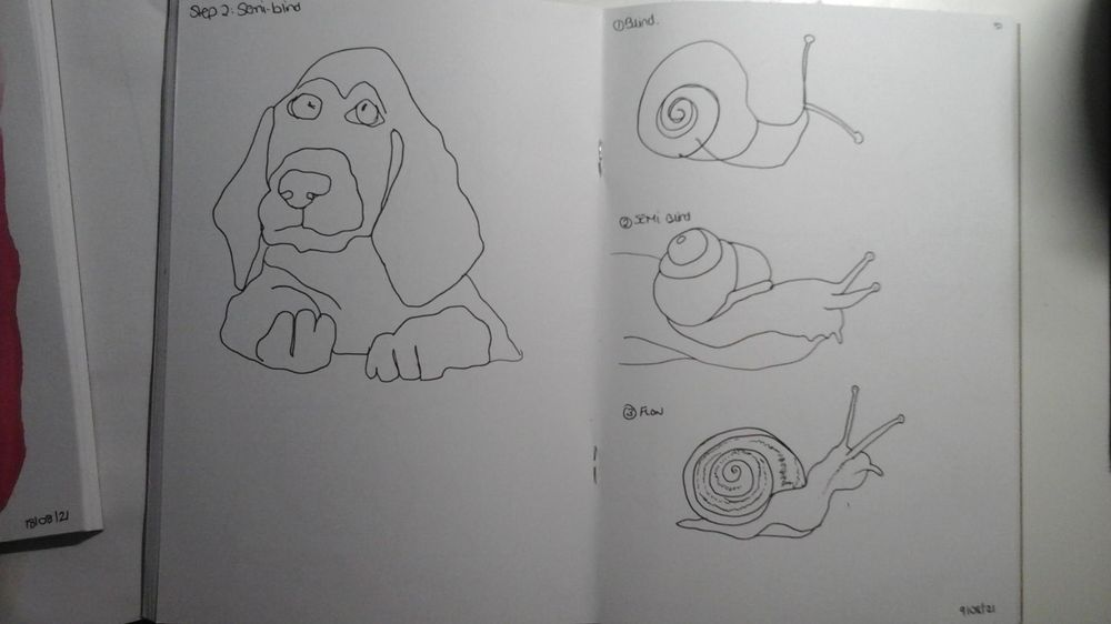 Blind contour drawing - image 9 - student project