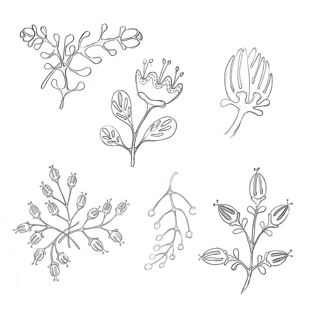 Floral Pattern Design Set - image 1 - student project