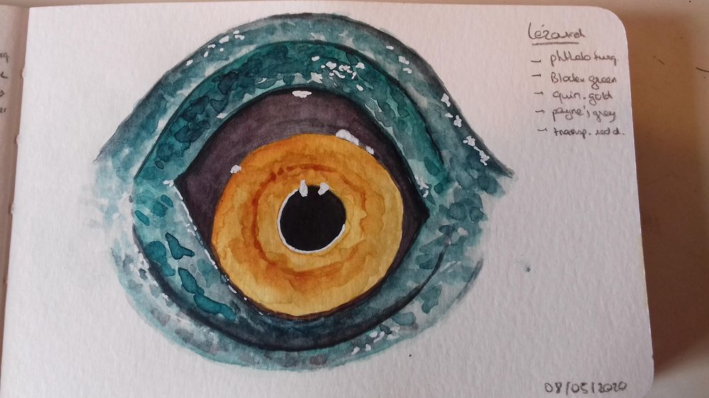 Animals Eyes - image 3 - student project