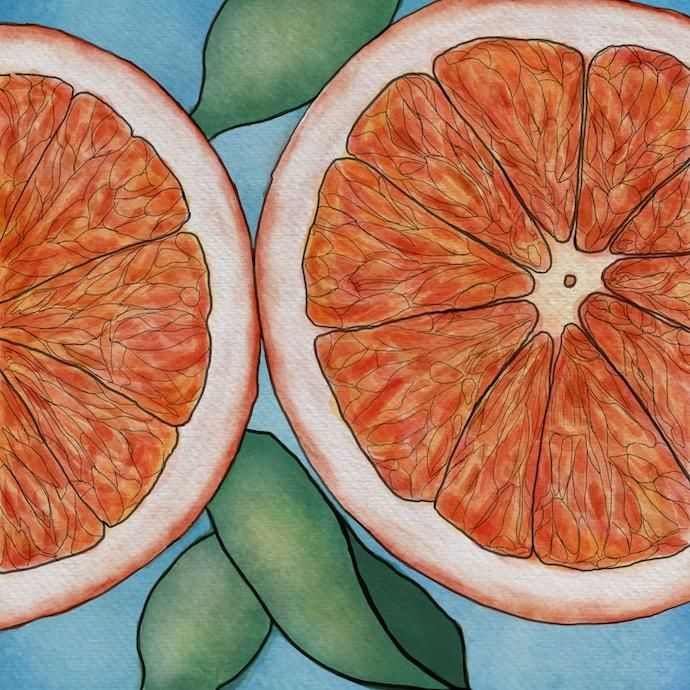 Blood Orange Watercolor - image 1 - student project