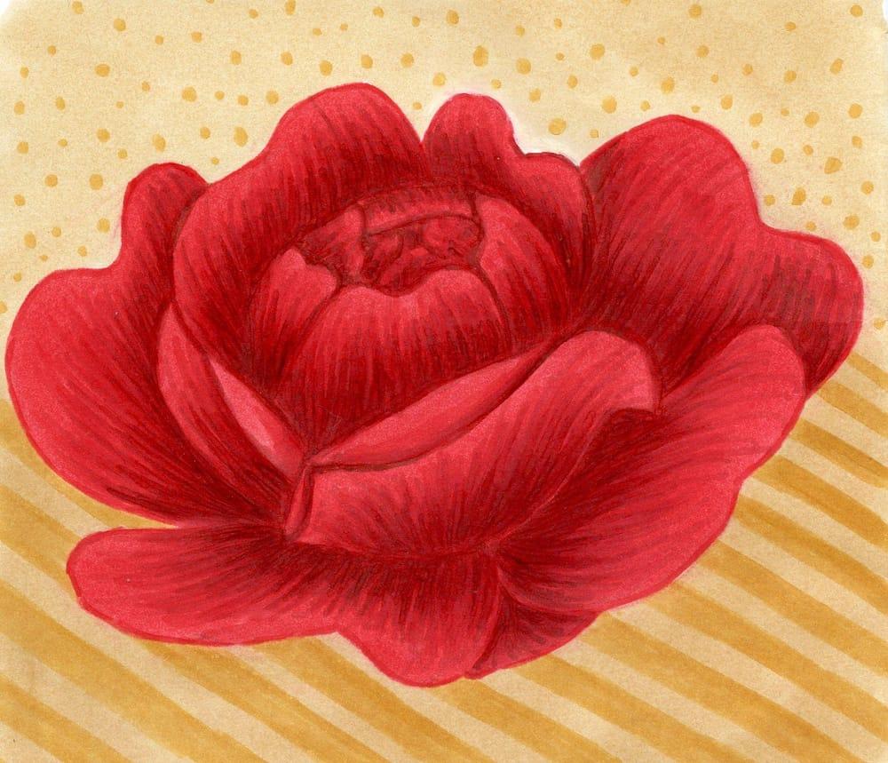 Red velvet rose - image 1 - student project