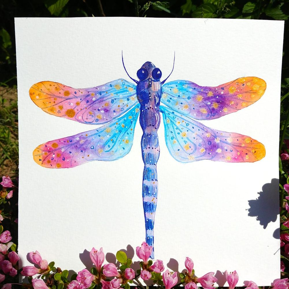 Magical dragonflies - image 1 - student project
